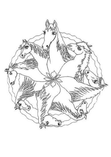 Mandala Heste